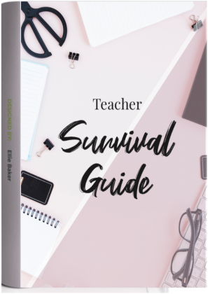 Teacher survival guide
